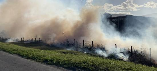 Incêndio atinge área às margens da BR-101 em Rio Bonito